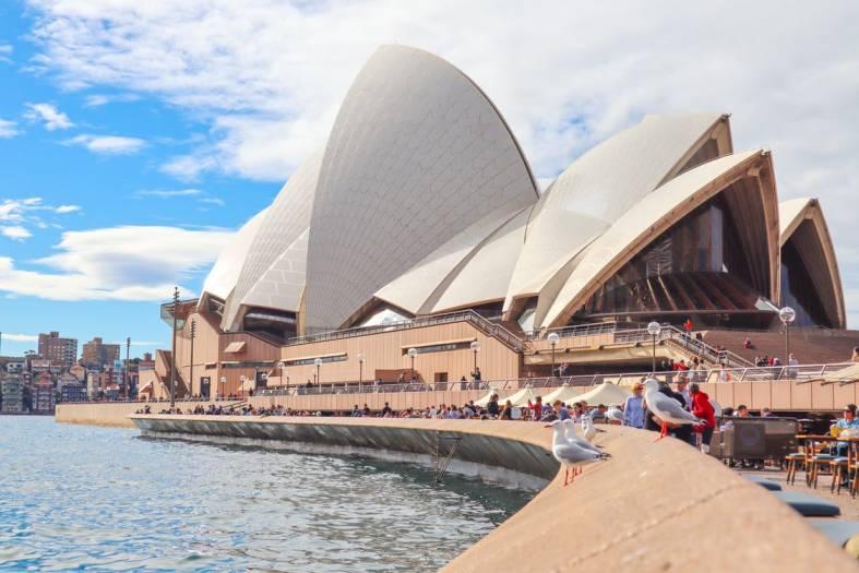 Study in Australia - Focus Education